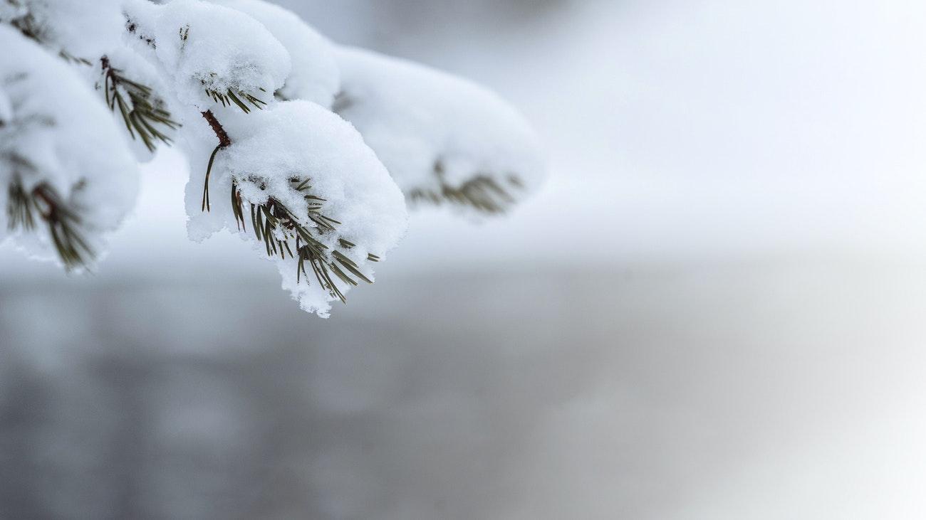 winter move - local moving company - perrysburg toledo ohio - perrysburg moving & hauling
